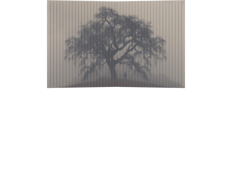 Atelier Relief / Tree