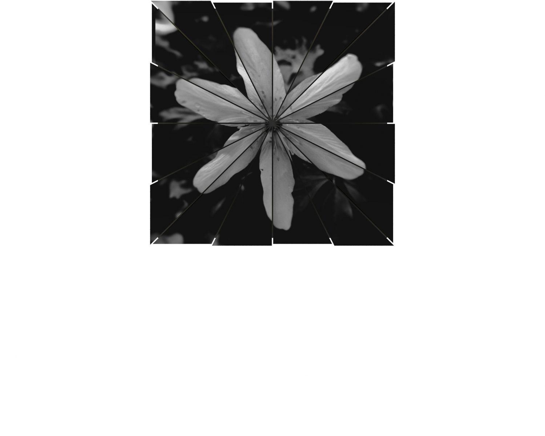 Atelier Relief / Flower