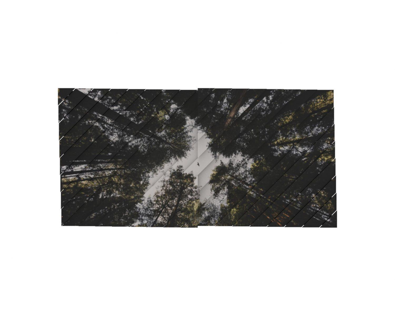 Atelier Relief / Forest II