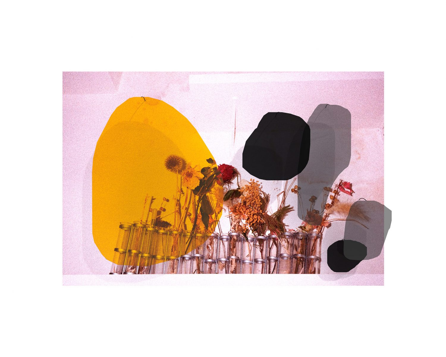 Atelier Relief / Mobile Flowers